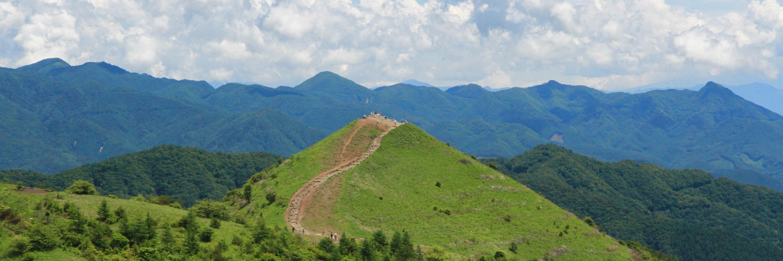 夏の飯盛山山頂付近